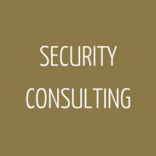 0007_security_consulting